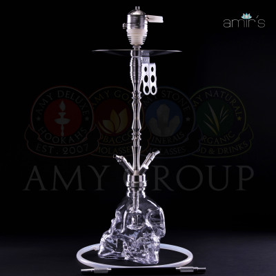 AMIR'S 302